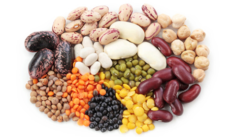 legumes in pregnancy