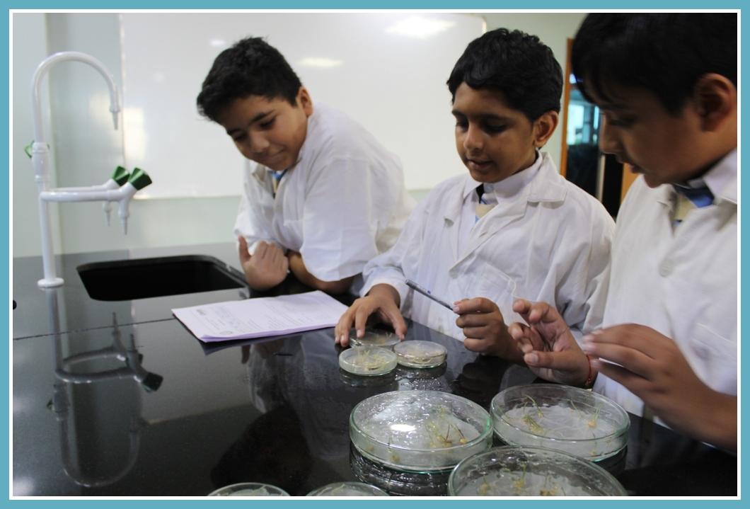 Edify International School Pune Science LabLabs (1)